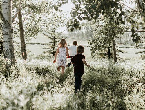 dzieci na weselu bawią się na łące